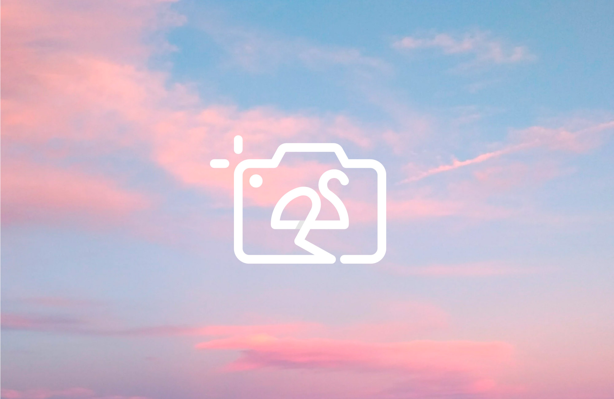 boom-agencia-marketing-digital-branding-ola-studio-fotografia-logo